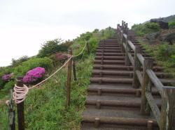 階段はそんなに長くないよー